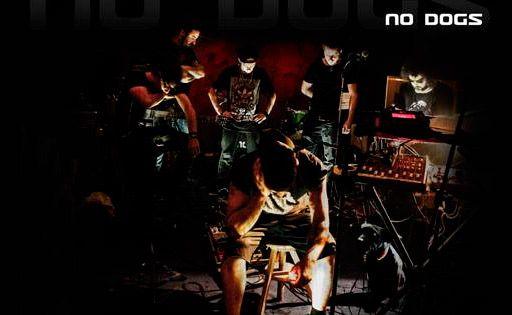 nodogs1