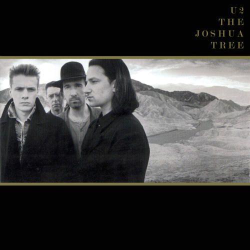 the-joshua-tree