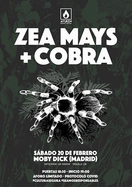 zea mays moby dick concierto